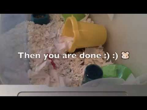 How to clean a hamster cage!!
