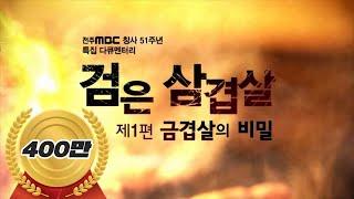 전주MBC 특집다큐 '검은 삼겹살' 제1편 금겹살의 비밀 (유룡 기자 , 한국방송기자대상, 고화질)