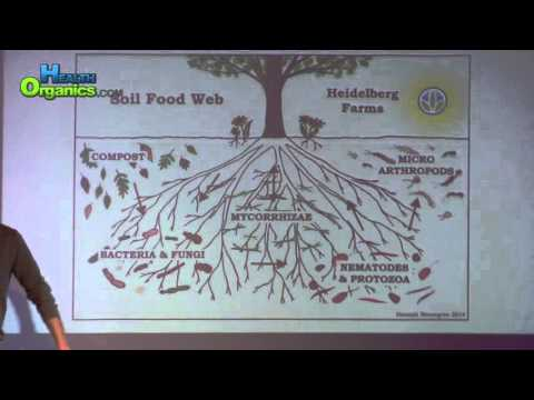 Cannabis Science Pub Oct 2015 Soil Science Part 4 Andrew Black