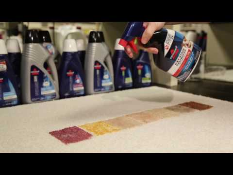 BISSELL® Oxy Stain Destroyer Pet for Carpet and Upholstery- Multiple Stains