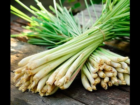How to prepare Lemongrass for cooking