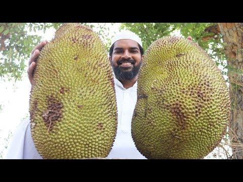 Jack fruit biryani Recipe | By Nawabs Kitchen
