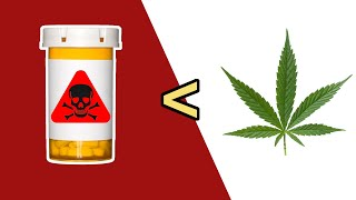 10 Legal Things More Dangerous Than Marijuana