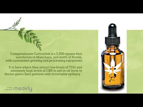 Medical Marijuana in Texas