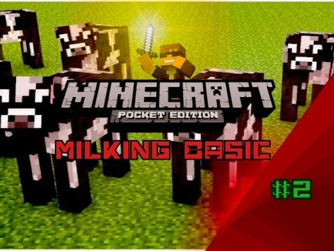 Minecraft Pocket Edition Basic - How to Milk a Cow