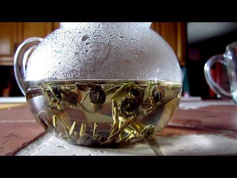 Blooming Tea- Jasmine Green Pearl