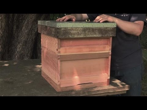 How to Make your Own Beehive