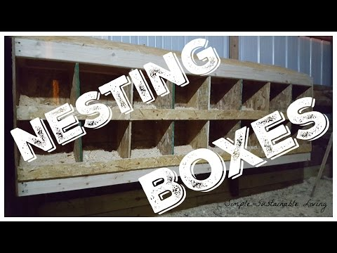 Chicken Coop Nesting Boxes