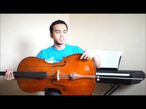 Cecilio CCO-300 Cello Review