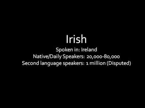 Celtic Language Fragments