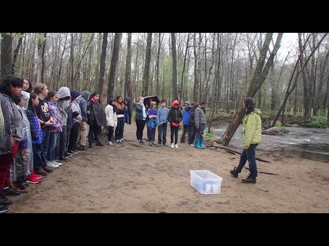 Trout Release in Ward Pound Ridge Reservation, NY | Middle School Trip 2016 HD 1080