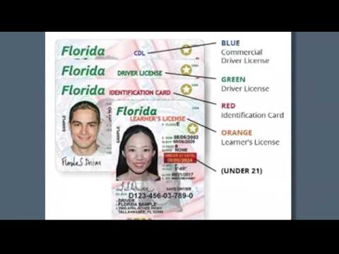 Coming soon: New look, security features for Florida licenses