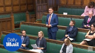 Wes Streeting and Andrea Leadsom clash in Commons over pairing rules - Daily Mail