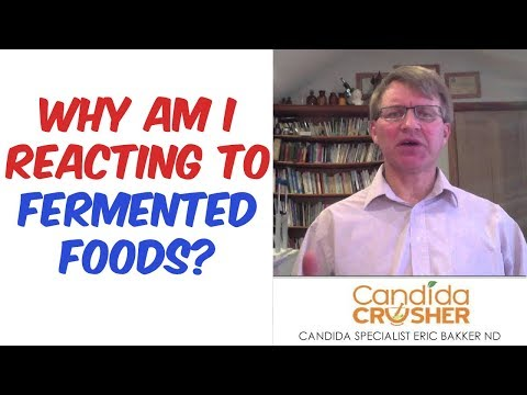 Im Reacting To Fermented Foods HELP!