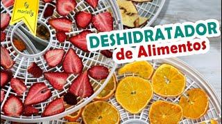 Deshydrateur Silvercrest Lidl Alimentaire Test Fruits Et Légumes
