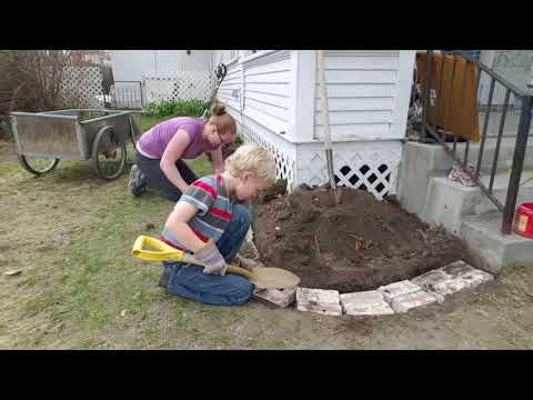 Building A Rock Wall - The Foundation. With A Big Surprise