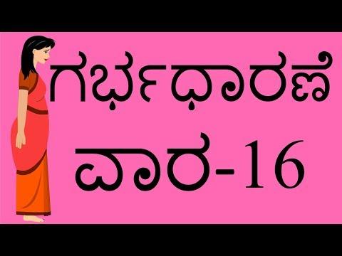 Pregnancy Kannada Week 16