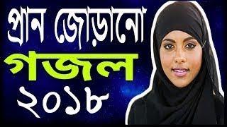 Tomi Rohmoter Khajina,New Islamic Gojol 2018,