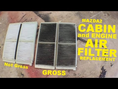 Mazda2 | Cabin and Engine Air Filter Replacement