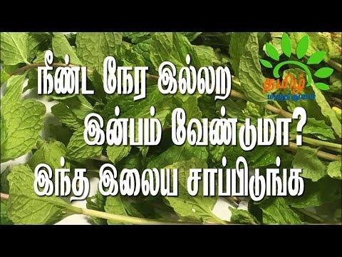 நீண்ட நேர இல்லற இன்பம் வேண்டுமா? இந்த இலைய சாப்பிடுங்க..| Maruthuvam in Tamil