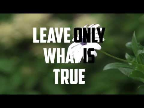Christian Music Downloads | First Love - Drew Ley (Official Lyric Video)