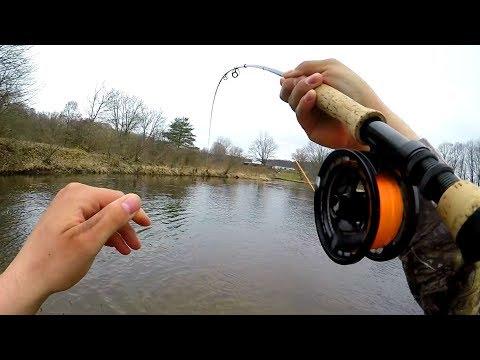 Fly Fishing Steelhead Rogue River (Michigan)