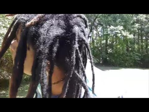 My freeform locs in the sun! (10 min video)