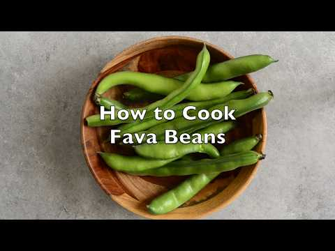 How To Prep and Cook Fava Beans