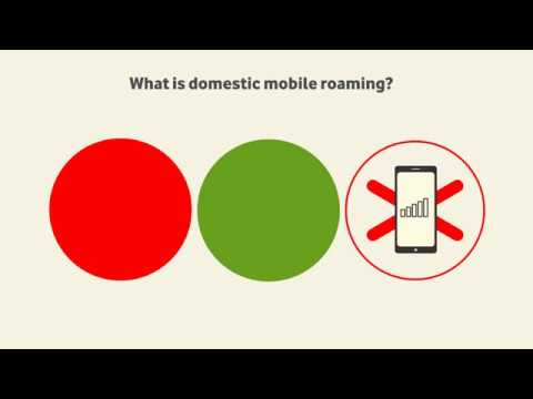 What is domestic mobile roaming?