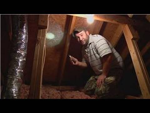 Pest Control : How to Remove Bees From the Attic