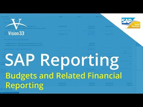 SAP Business One Training - Aug 22, 2012 - Budgets and Related Financial Reporting by Vision33