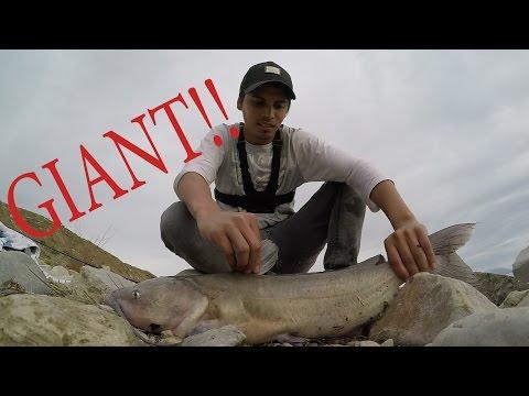 Utah Lake Part II: Catching My PB Catfish 12 pound MONSTER!!