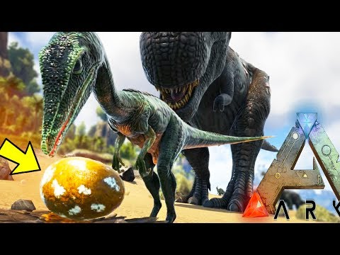 PLAY AS DINO, BREEDING AS ARKS SMALLEST CREATURES STREAM - Ark Survival Evolved