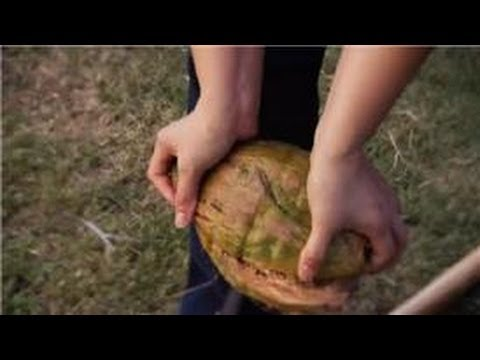 Deliciously Coconut : How to Remove the Green Shell From a Coconut