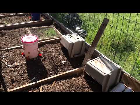 Basic Layout of 3 Aquaponic / Aquatic Systems - Part One