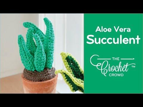 How to Crochet an Aloe Vera Plant