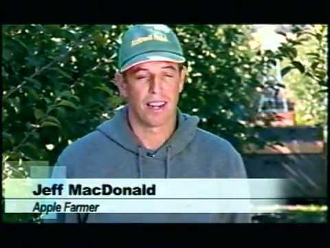 Martinelli Apple Juice Nutrition