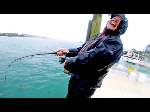 Fishing in Brutal Rain on the Docks, Catch N Cook