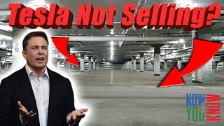 Download Will Tesla Stop Selling Cars? | In Depth Video