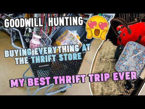 BUYING EVERYTHING AT THE THRIFT STORE   MY BEST THRIFT TRIP EVER   GOODWILL HUNTING EP. 386