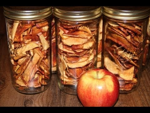 Dehydrated Apple Chips, Better Than Store Bought