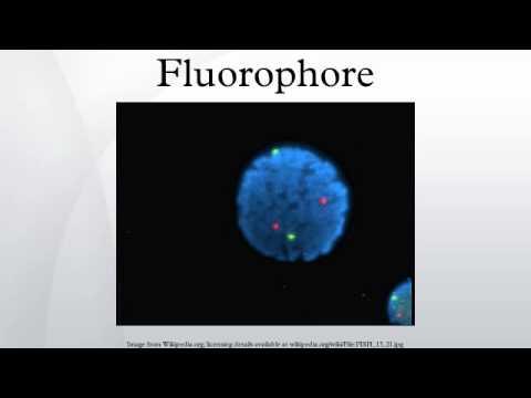 Fluorophore