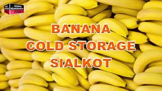 Banana Cold Storage Sialkot ! Very Informative Video !