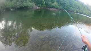 Dry Fly Fishing Down Stream|Grayling And Trout Fly Fishing|Fly Fishing With Dry Flies