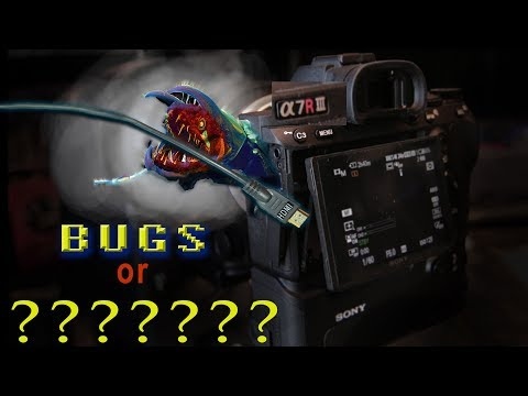 Bugs OR Intentional ??? - Sony a7R III Face Priority AF in 4K FLAWS