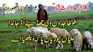 kalam baba qasoor mand   heer waris shah kalam punjabi   bilal haider   tajdar e madina  Sufi Poetry