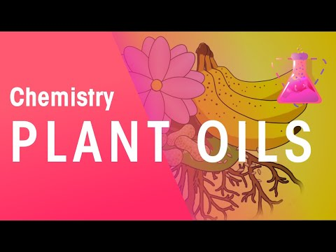 The Extraction of Plant Oils | The Chemistry Journey | The Fuse School