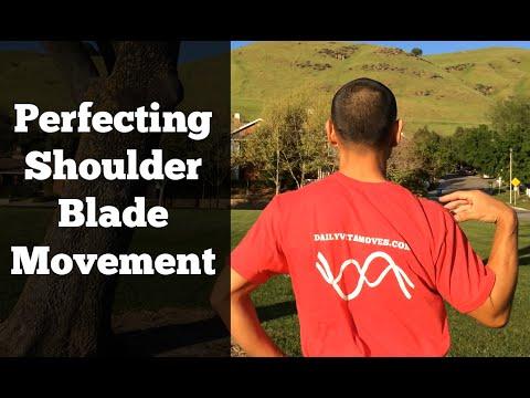 Shoulder Rotator Cuff Exercises #2 - Shoulder Blade Exercises
