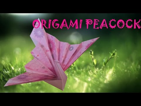 Origami Peacock - Origami Easy