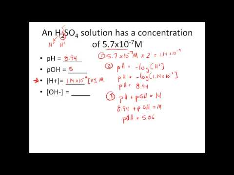 Given [H+] or [OH-], Calculate pH & pOH